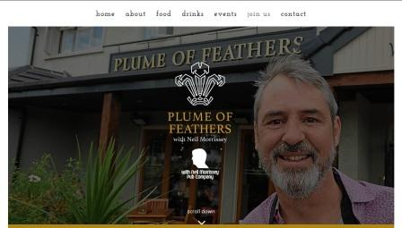 image of the Plume of Feathers website