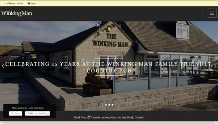 image of the Winking Man website
