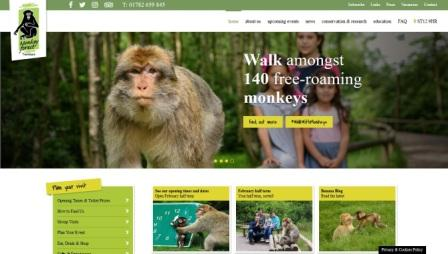 image of the monkey forest website